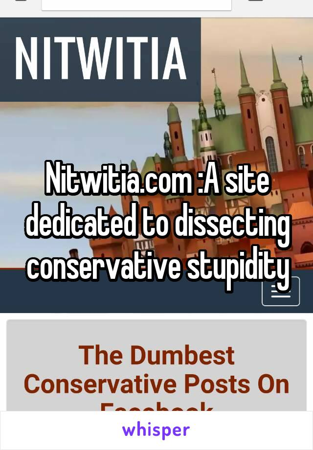 Nitwitia.com :A site dedicated to dissecting conservative stupidity