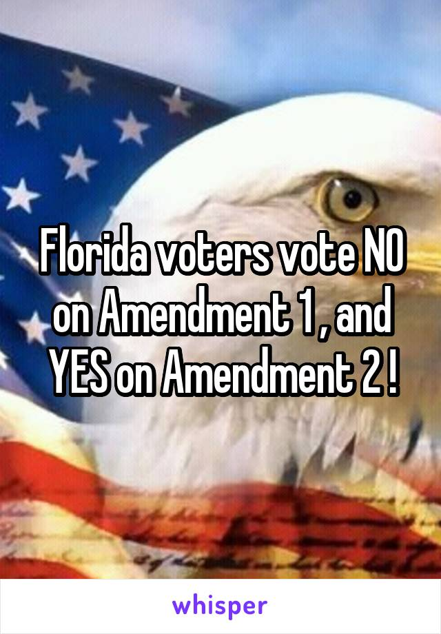 Florida voters vote NO on Amendment 1 , and YES on Amendment 2 !