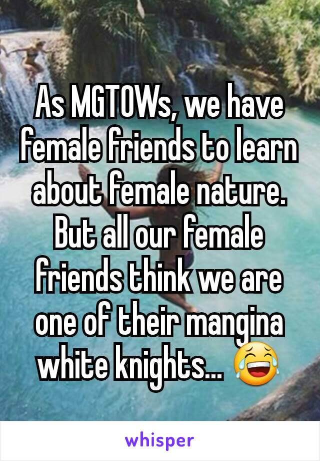 As MGTOWs, we have female friends to learn about female nature. But all our female friends think we are one of their mangina white knights... 😂