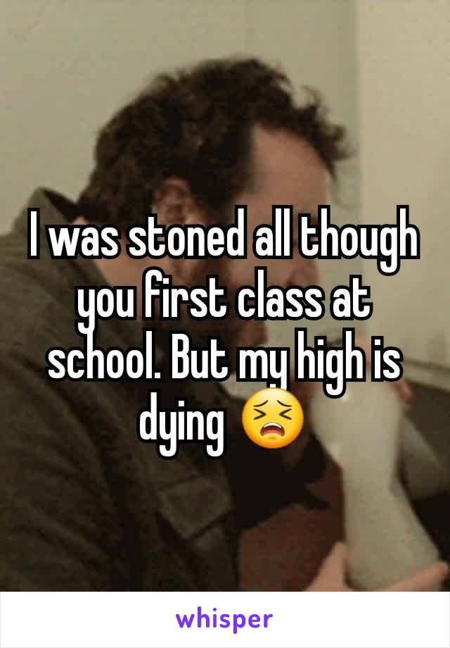 I was stoned all though you first class at school. But my high is dying 😣