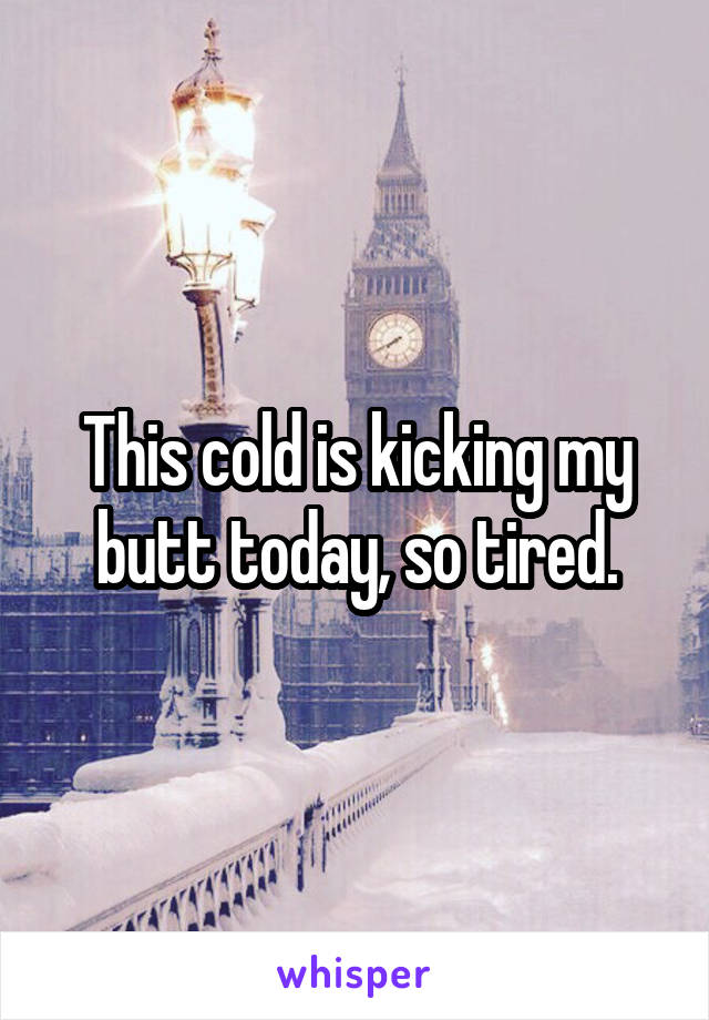This cold is kicking my butt today, so tired.