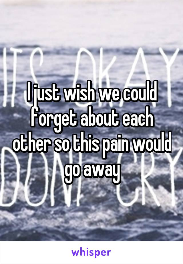 I just wish we could forget about each other so this pain would go away