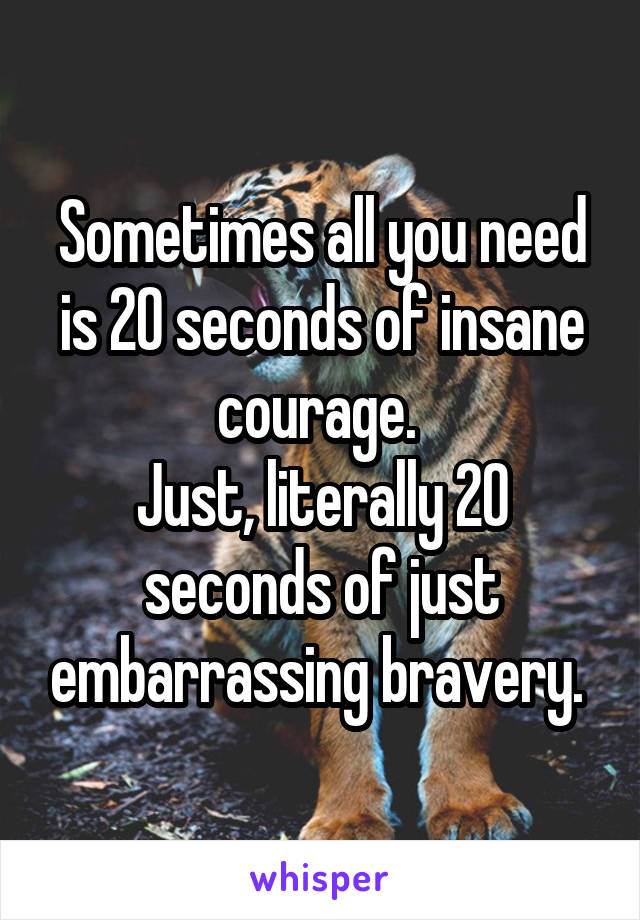 Sometimes all you need is 20 seconds of insane courage.  Just, literally 20 seconds of just embarrassing bravery.