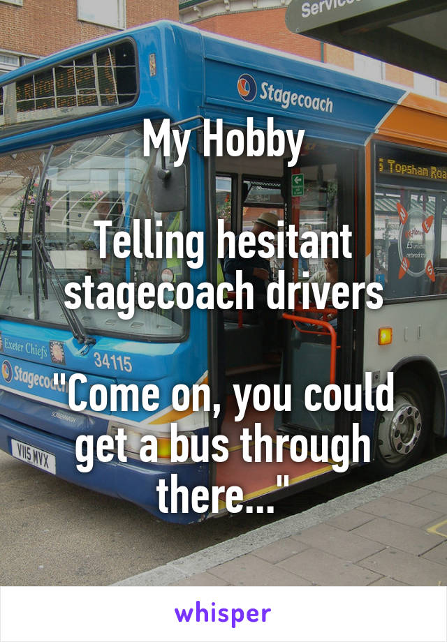 "My Hobby  Telling hesitant stagecoach drivers  ""Come on, you could get a bus through there..."""