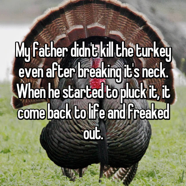 My father didn't kill the turkey even after breaking it's neck. When he started to pluck it, it come back to life and freaked out.
