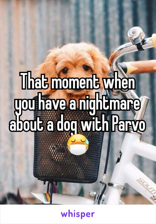 That moment when you have a nightmare about a dog with Parvo 😷