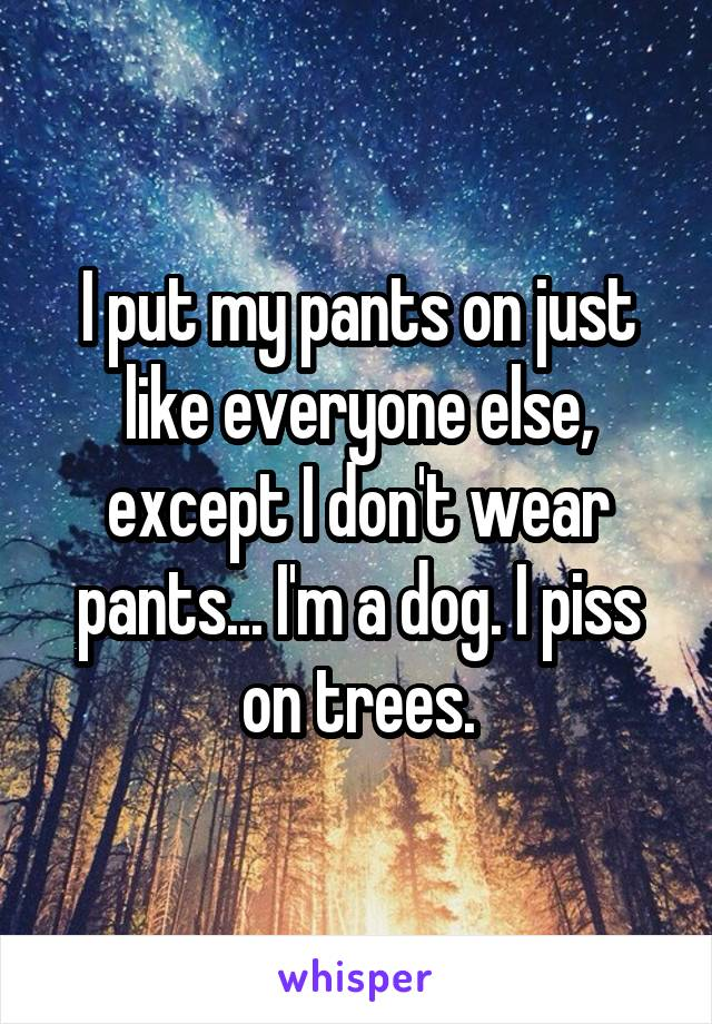 I put my pants on just like everyone else, except I don't wear pants... I'm a dog. I piss on trees.
