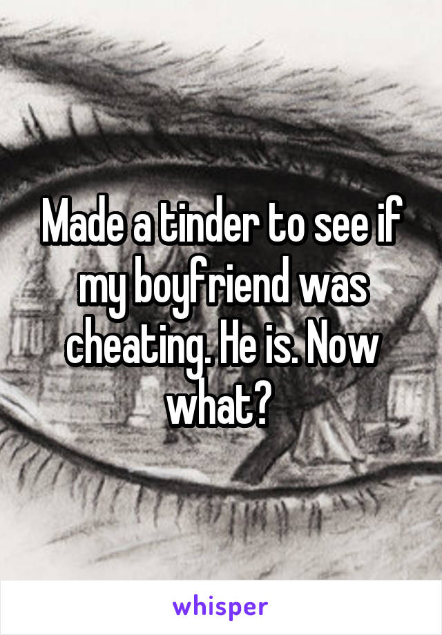 Made a tinder to see if my boyfriend was cheating. He is. Now what?