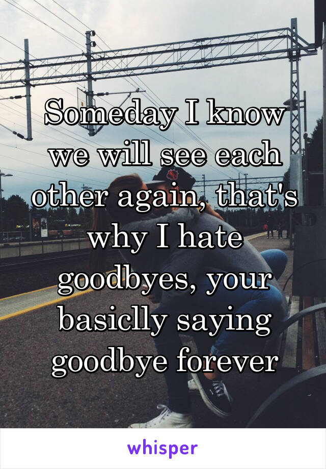 Someday I know we will see each other again, that's why I hate goodbyes, your basiclly saying goodbye forever