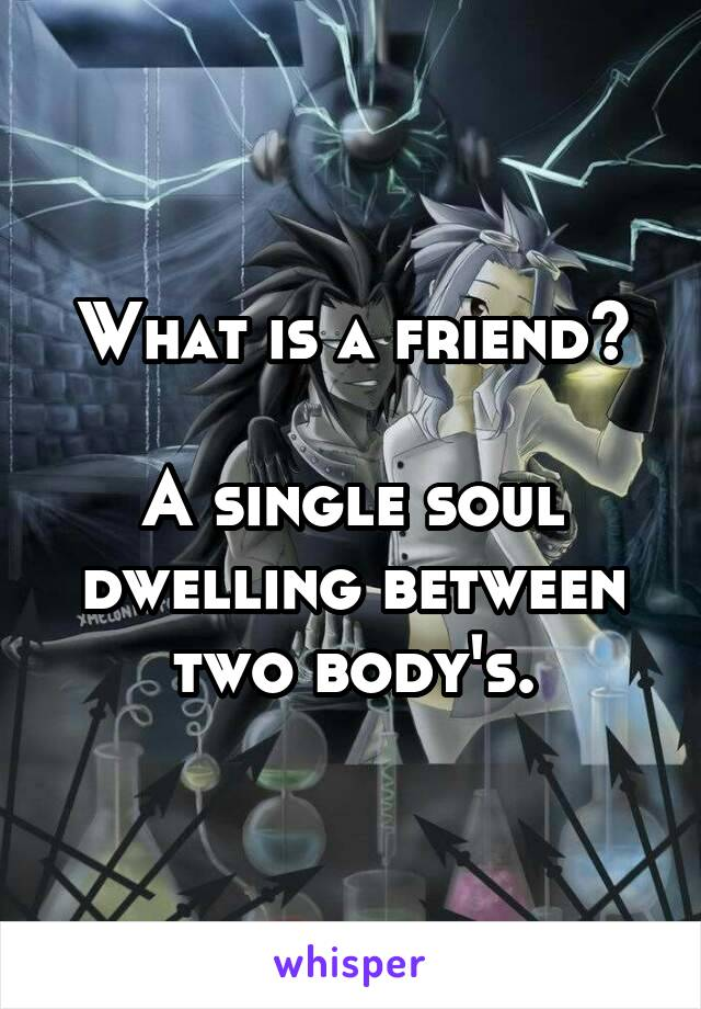 What is a friend?  A single soul dwelling between two body's.