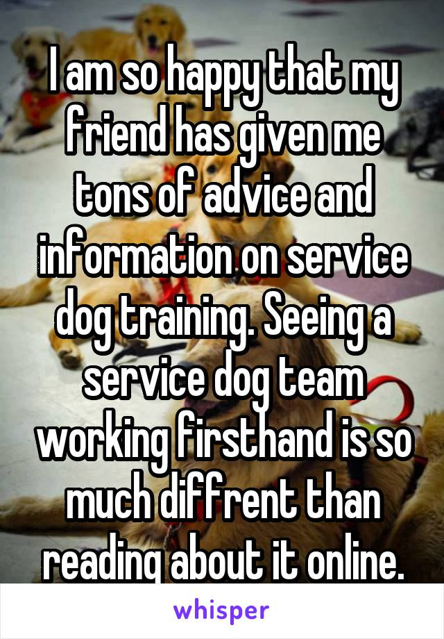 I am so happy that my friend has given me tons of advice and information on service dog training. Seeing a service dog team working firsthand is so much diffrent than reading about it online.
