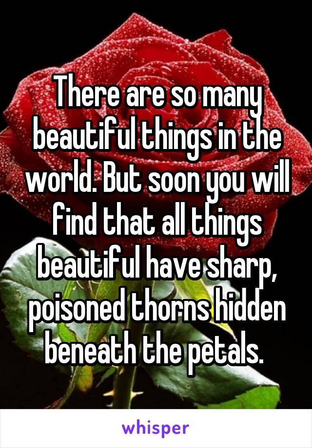 There are so many beautiful things in the world. But soon you will find that all things beautiful have sharp, poisoned thorns hidden beneath the petals.