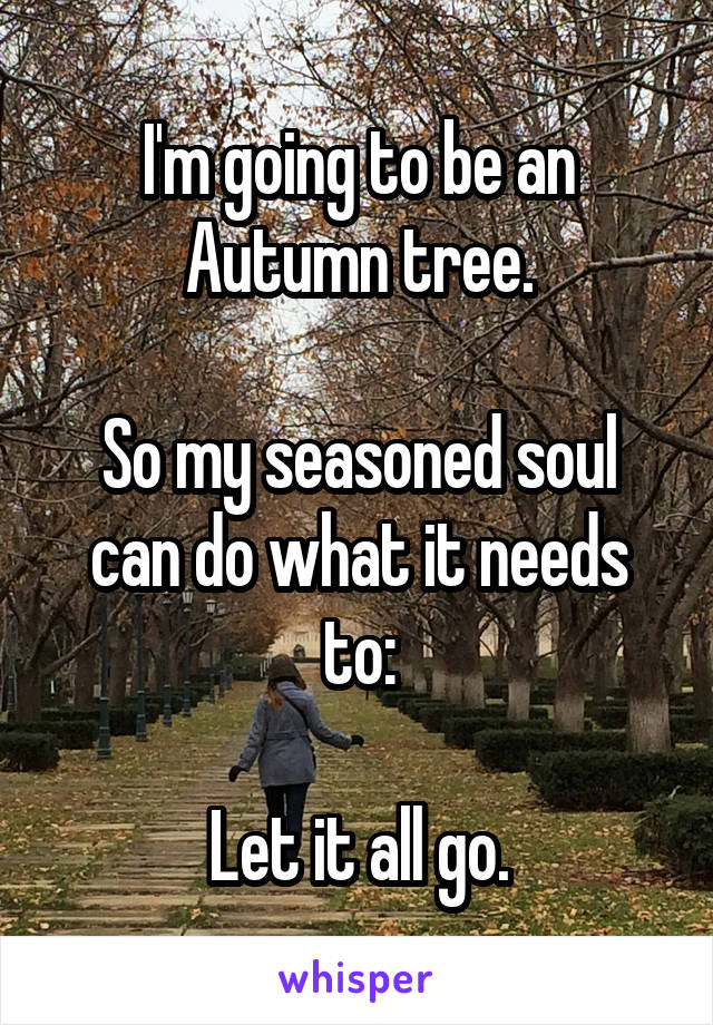 I'm going to be an Autumn tree.  So my seasoned soul can do what it needs to:  Let it all go.