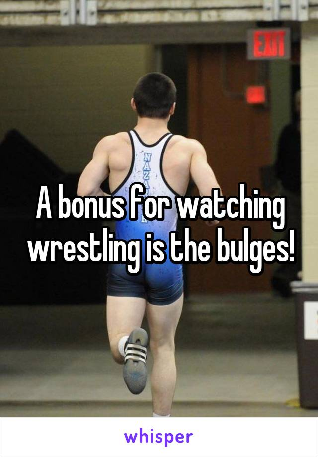 A bonus for watching wrestling is the bulges!