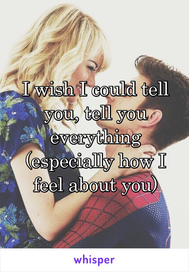 I wish I could tell you, tell you everything (especially how I feel about you)