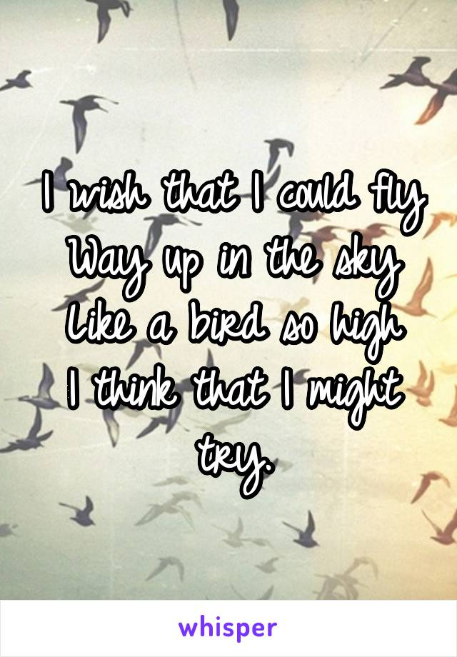 I wish that I could fly Way up in the sky Like a bird so high I think that I might try.