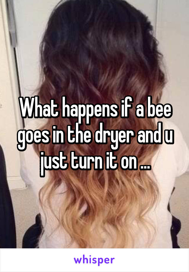 What happens if a bee goes in the dryer and u just turn it on ...