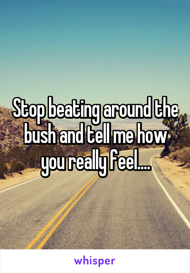 Stop beating around the bush and tell me how you really feel....