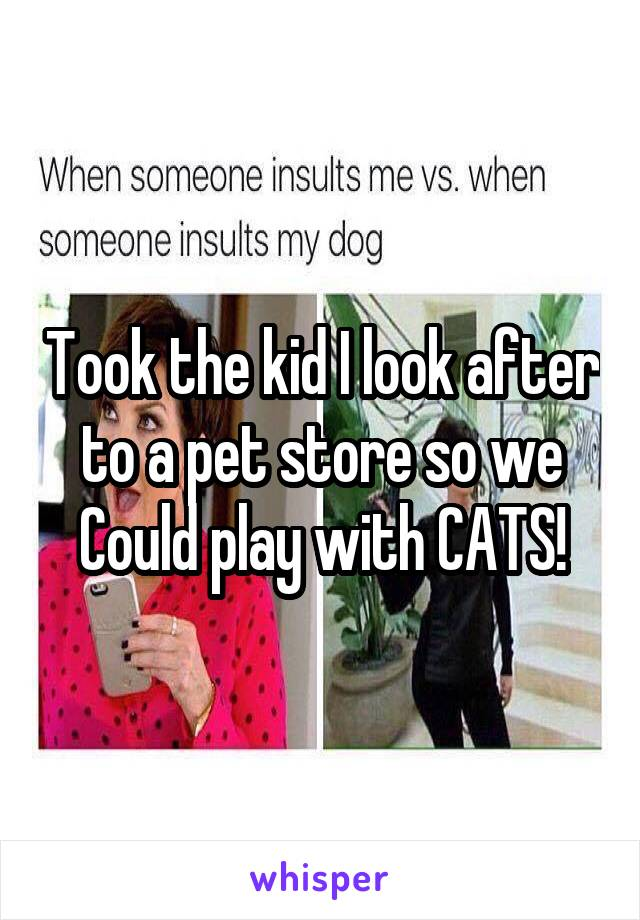 Took the kid I look after to a pet store so we Could play with CATS!