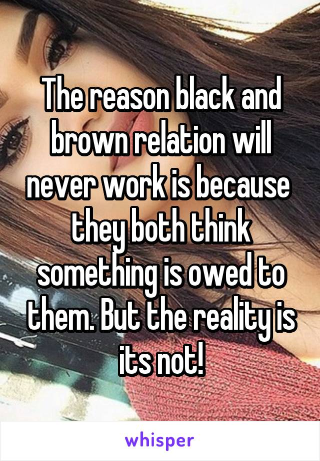 The reason black and brown relation will never work is because  they both think something is owed to them. But the reality is its not!
