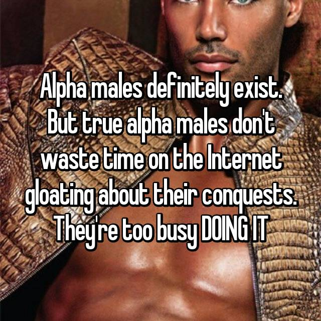 alpha males don t exist