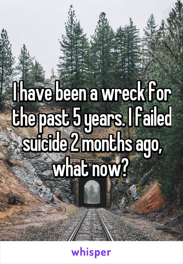 I have been a wreck for the past 5 years. I failed suicide 2 months ago, what now?