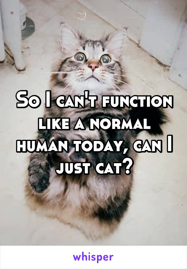 So I can't function like a normal human today, can I just cat?