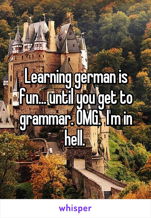 Learning german is fun... until you get to grammar. OMG.  I'm in hell.
