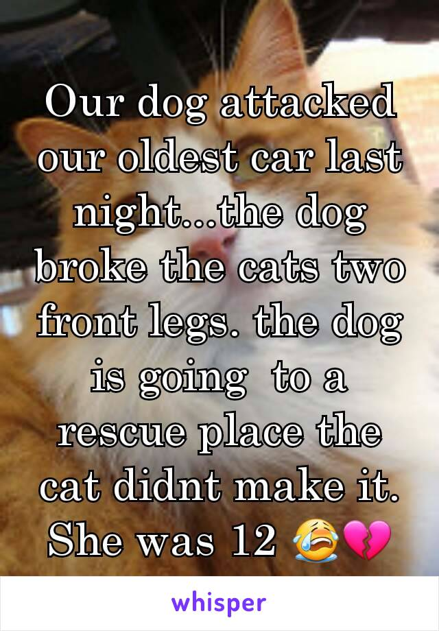 Our dog attacked our oldest car last night...the dog broke the cats two front legs. the dog is going  to a rescue place the cat didnt make it. She was 12 😭💔