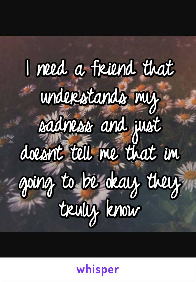 I need a friend that understands my sadness and just doesnt tell me that im going to be okay they truly know