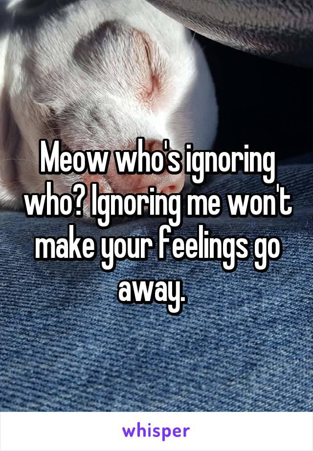 Meow who's ignoring who? Ignoring me won't make your feelings go away.