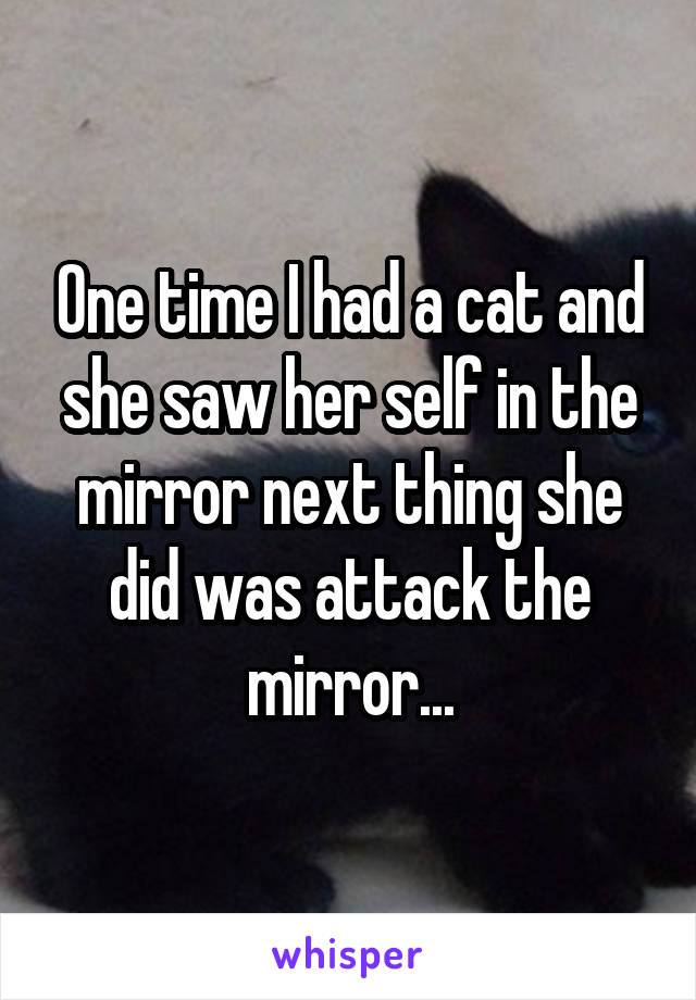 One time I had a cat and she saw her self in the mirror next thing she did was attack the mirror...
