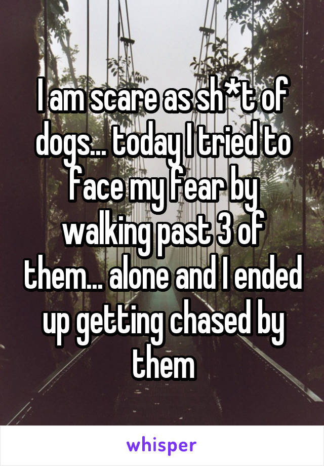 I am scare as sh*t of dogs... today I tried to face my fear by walking past 3 of them... alone and I ended up getting chased by them