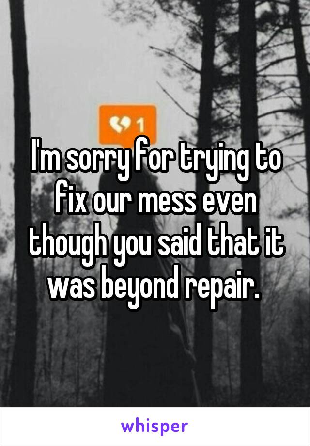 I'm sorry for trying to fix our mess even though you said that it was beyond repair.