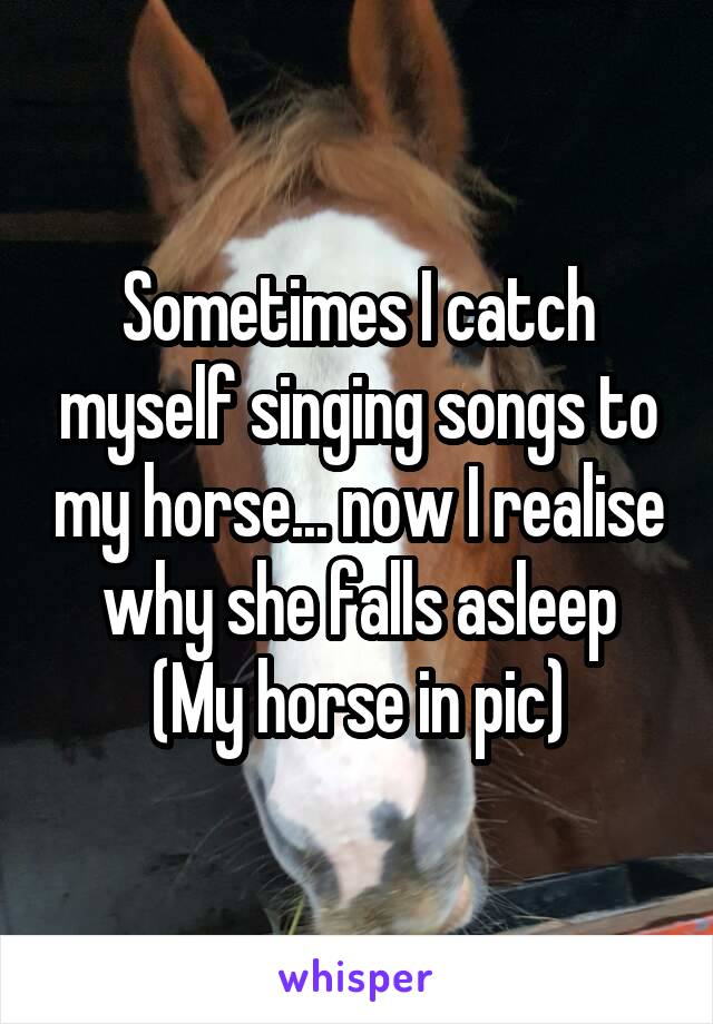 Sometimes I catch myself singing songs to my horse... now I realise why she falls asleep (My horse in pic)
