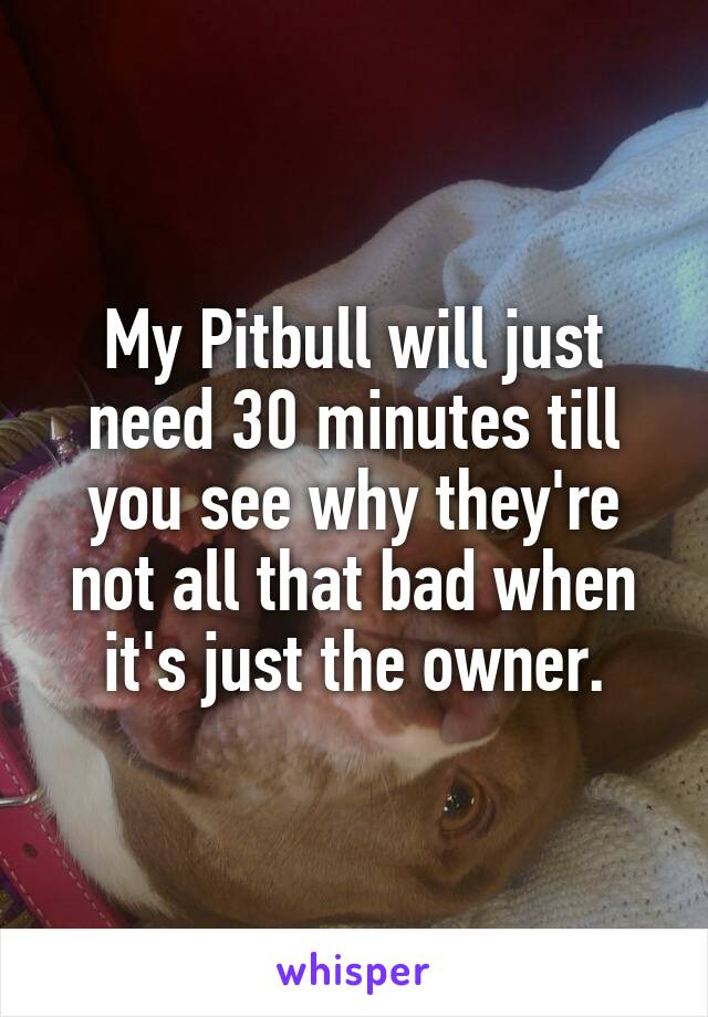 My Pitbull will just need 30 minutes till you see why they're not all that bad when it's just the owner.