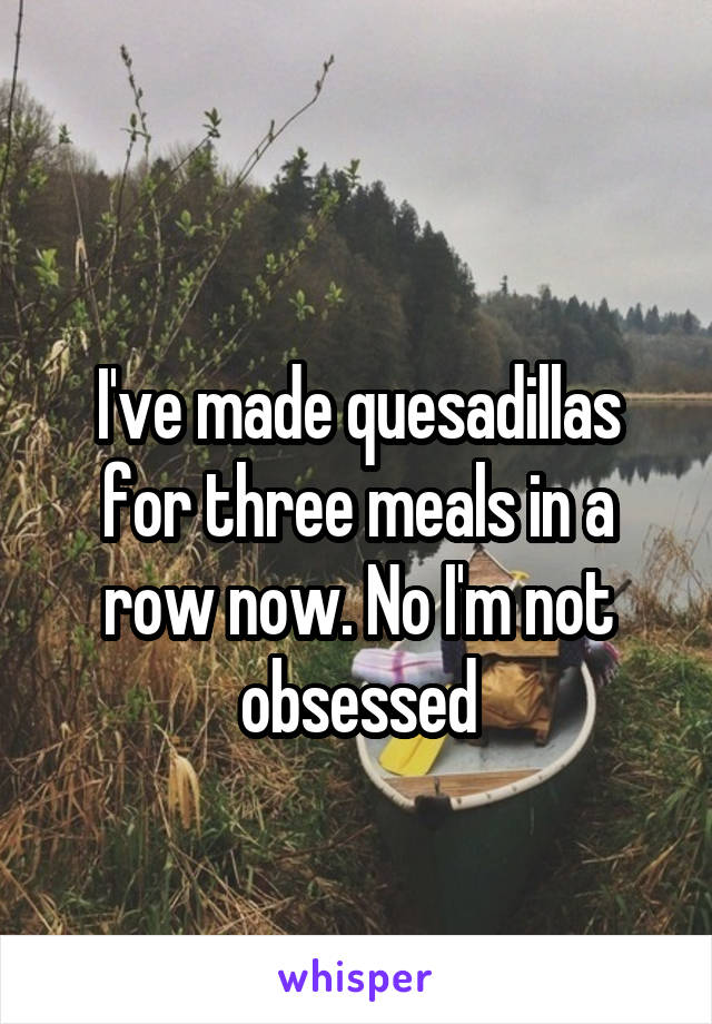I've made quesadillas for three meals in a row now. No I'm not obsessed