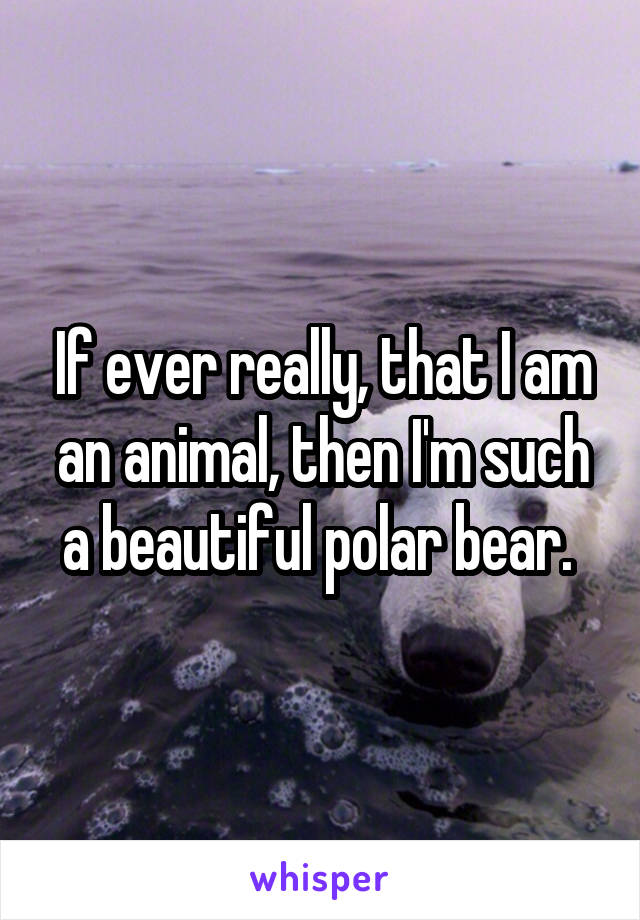 If ever really, that I am an animal, then I'm such a beautiful polar bear.