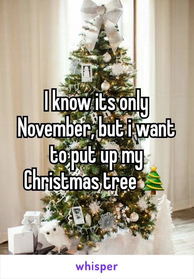I know its only November, but i want to put up my Christmas tree🎄