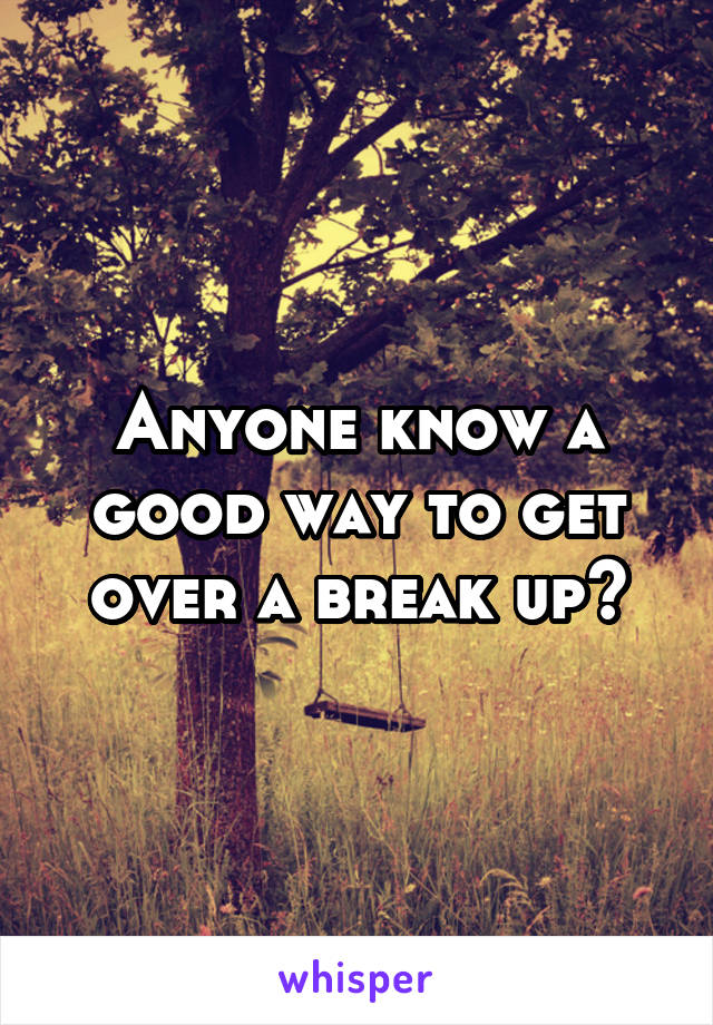 Anyone know a good way to get over a break up?