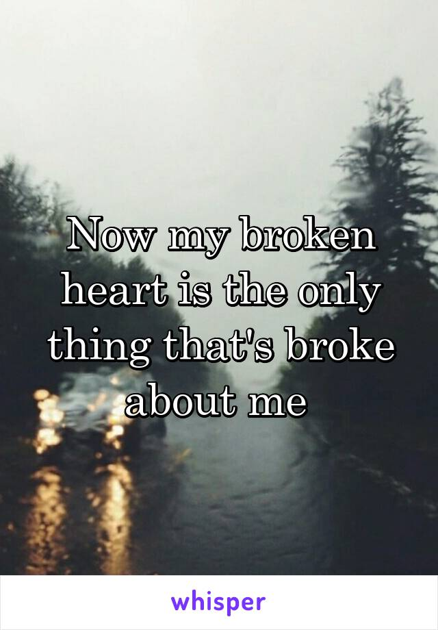 Now my broken heart is the only thing that's broke about me