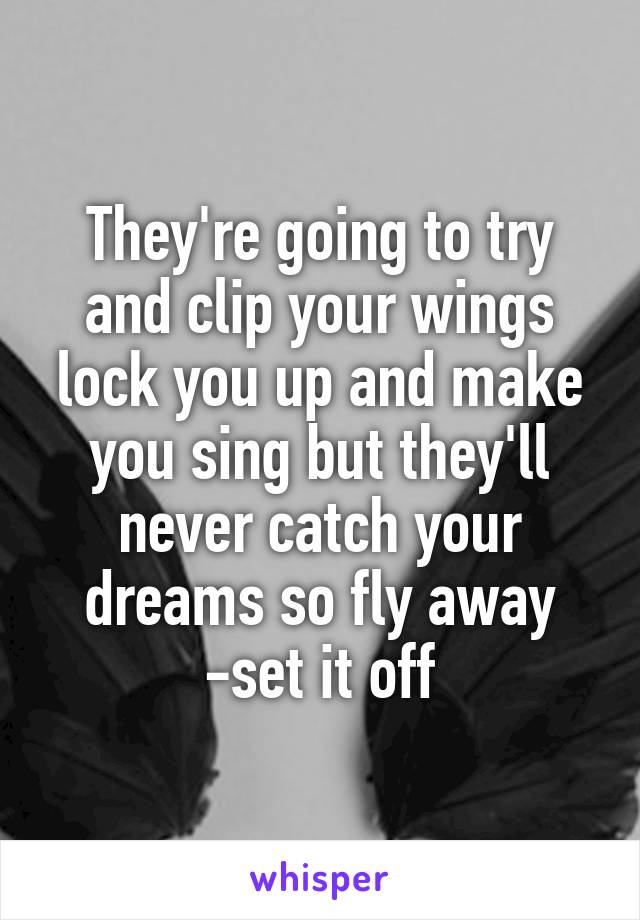 They're going to try and clip your wings lock you up and make you sing but they'll never catch your dreams so fly away -set it off