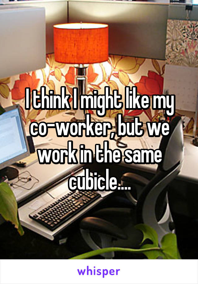 I think I might like my co-worker, but we work in the same cubicle....