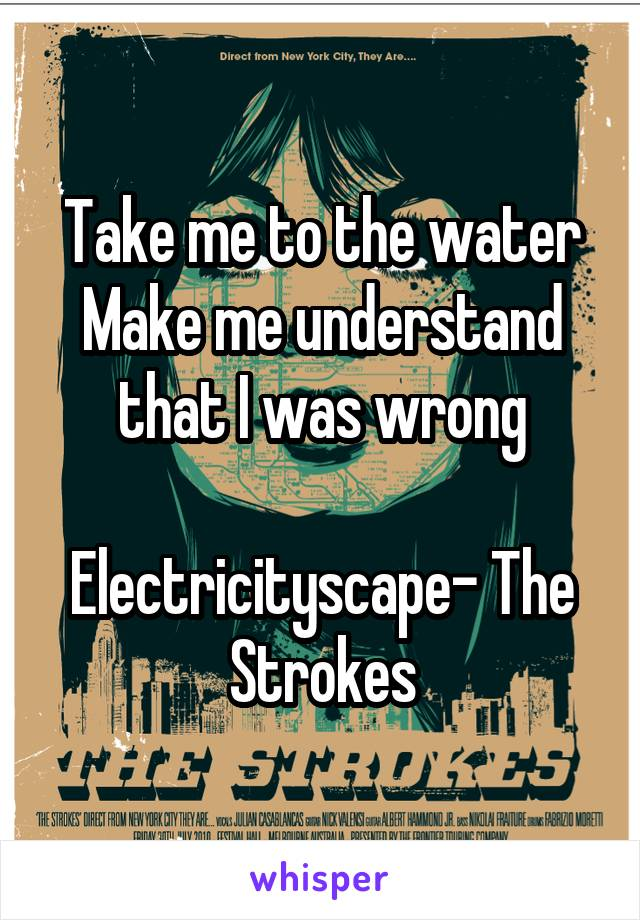 Take me to the water Make me understand that I was wrong  Electricityscape- The Strokes