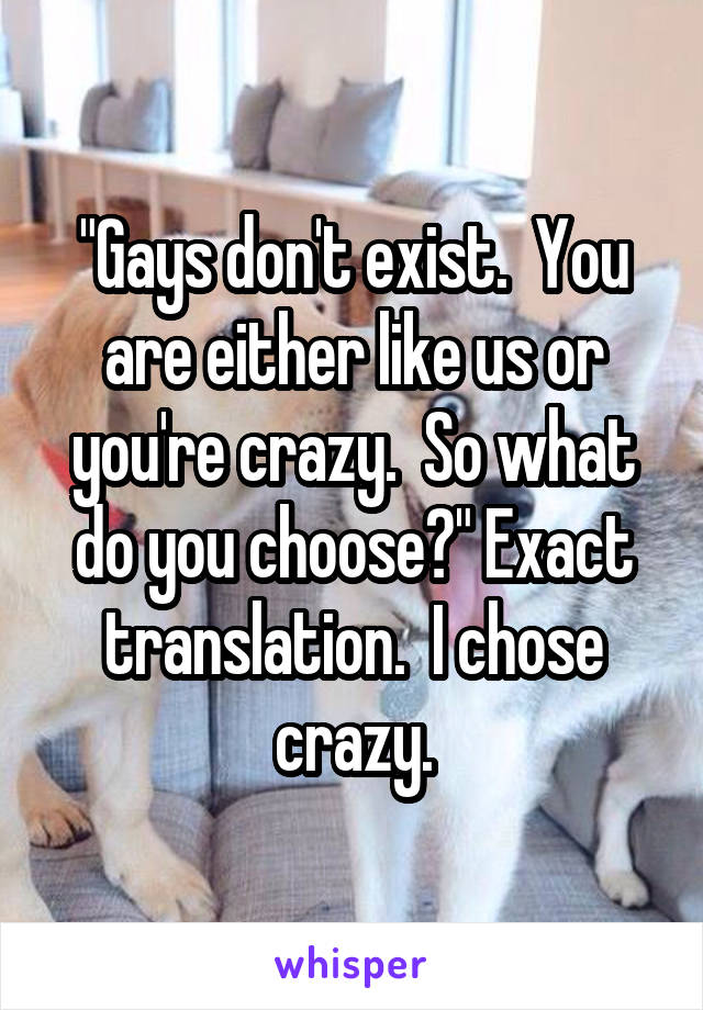 """Gays don't exist.  You are either like us or you're crazy.  So what do you choose?"" Exact translation.  I chose crazy."