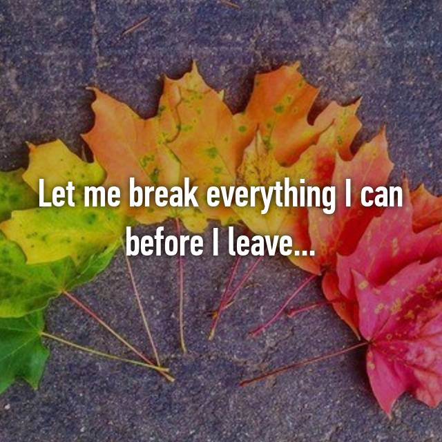 Let me break everything I can before I leave...