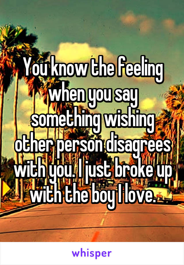 You know the feeling when you say something wishing other person disagrees with you. I just broke up with the boy I love.