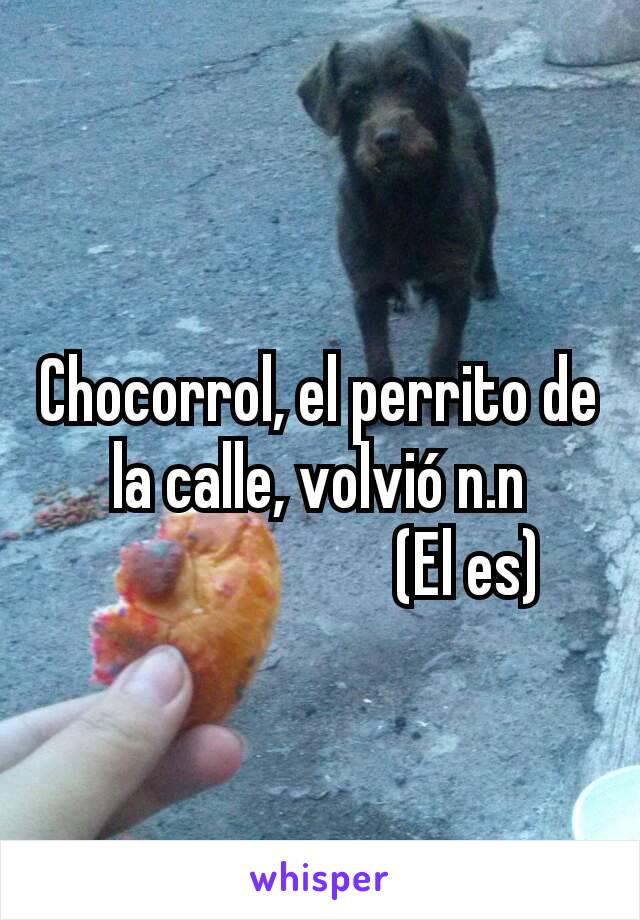 Chocorrol, el perrito de la calle, volvió n.n                        (El es)