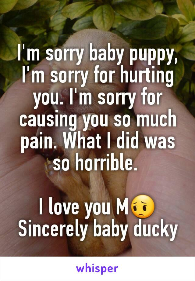 I'm sorry baby puppy, I'm sorry for hurting you  I'm sorry