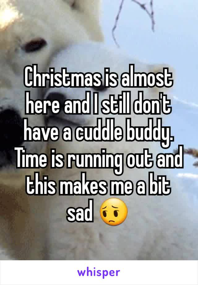 Christmas is almost here and I still don't have a cuddle buddy. Time is running out and this makes me a bit sad 😔